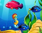 3 Kişilik Balık