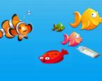 Balık Tutma Günü