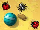 Böcekleri Ez