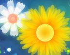 Çiçek Saga