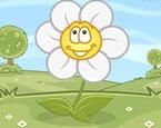 Çiçek Sulama