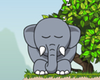 Fil Düşürme