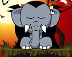 Fil Uyandır