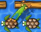 Kaplumbağa Köprüsü