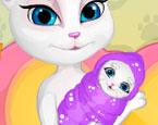 Kedi Doğumu