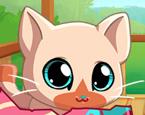 Cep Hayvanlarım Pisi Kedi