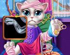 Kedi Doktoru