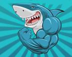 Köpekbalığı Savaşı