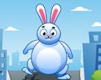 Koş Şişman Tavşan
