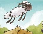 Koyunların Sorunu