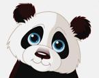 Maceracı Panda