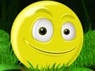 Maceracı Sarı Top