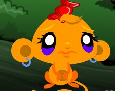 Maymunu Mutlu Et 37