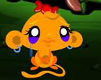Maymunu Mutlu Et 52