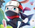 Ninja Tavşan