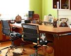 Ofiste Kayıp Eşya Bulma