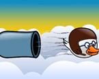 Ördek Top Atışı