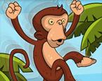 Örümcek Maymun