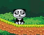 Portakalcı Panda