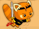 Sinsi Ninja