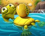 Suda Yüzen Kamplumbağa