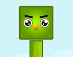 Yeşil Kutu