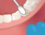 Diş Doktoru