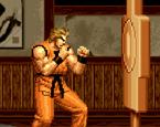 Dövüş Sanatı