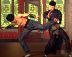 Kung Fu Dövüşü